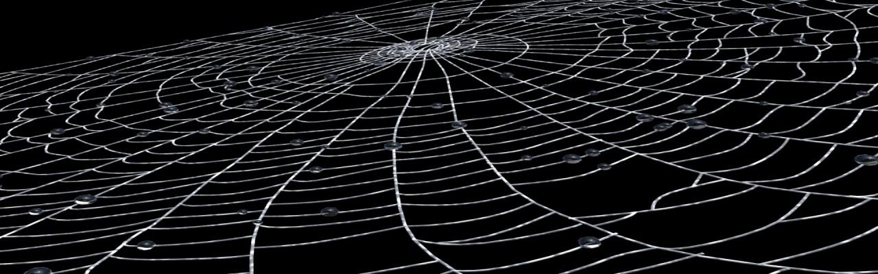 spidernetProdukt